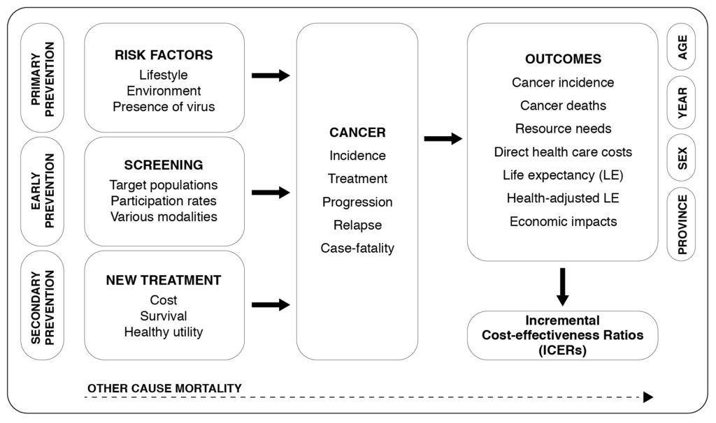 Diagram shows how primary prevention (i.e risk factors like lifestyle, environment and presence of virus), early prevention (i.e. screening target populations, their participation rates and various modalities) and secondary prevention (i.e. new treatment, its cost, survival rates and helathy utility) feed into cancer incidence, treatment, progression, relapse and case-fatality. Outcomes include cancer incidence, cancer deaths, resource needs, direct health-care costs, life expentancy, economic impacts, all of which are affected by age, year, sex and province. This data leads to conclusions around Incremental Cost-effectiveness Ratios (ICERs).